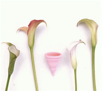 Plastic free July menstrual cup lily cup